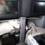 United Polaris Business 787 Storage